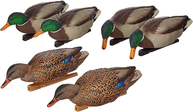 AvianX Top Flight Duck Open Water Mallard Decoy