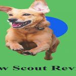 Paw Scout Review