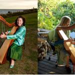 Best Beginner Harp