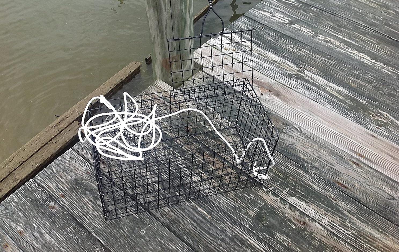 Best Blue Crab Traps (Pots)