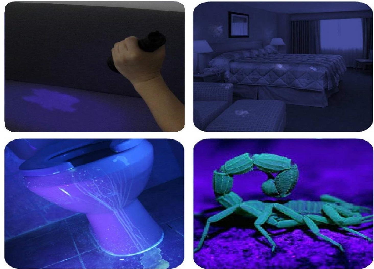 Best UV LED Blacklight Flashlight